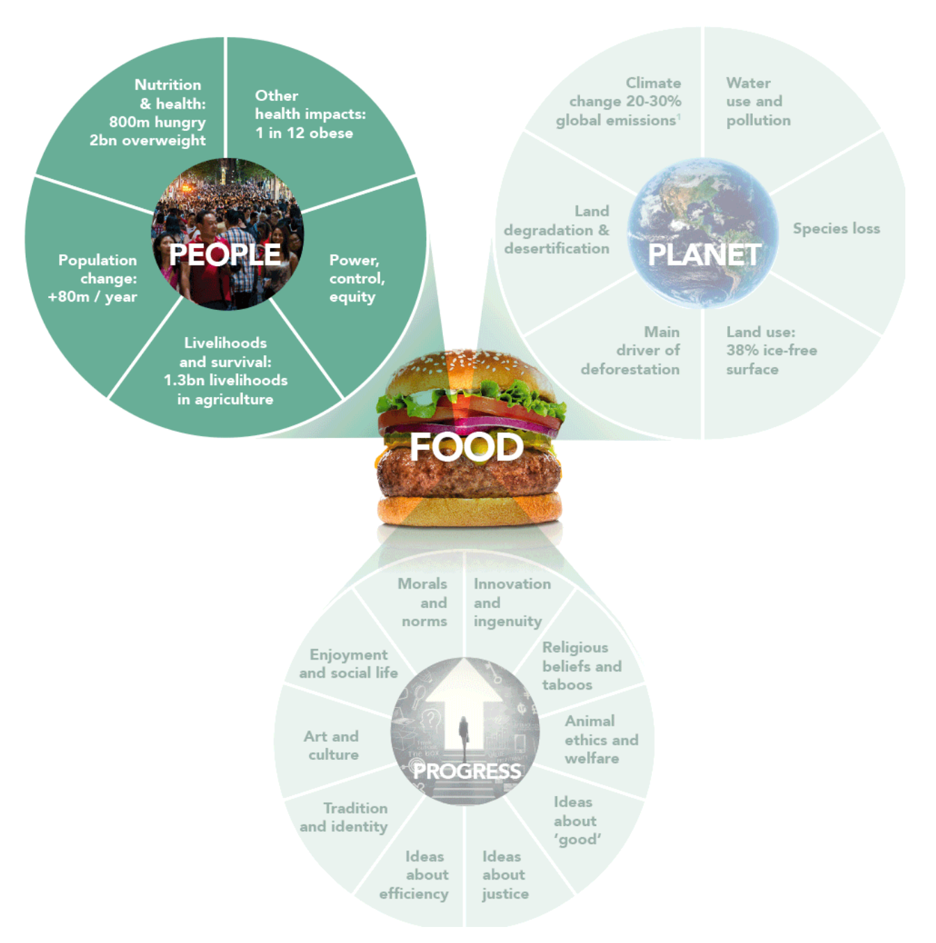 Figure 12: Connection between food systems and human issues.