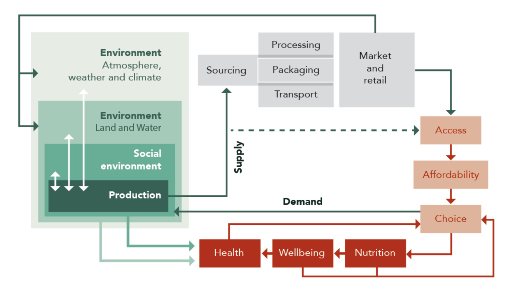 Figure 2: A food system diagram showing some social and environmental influences on the food system.