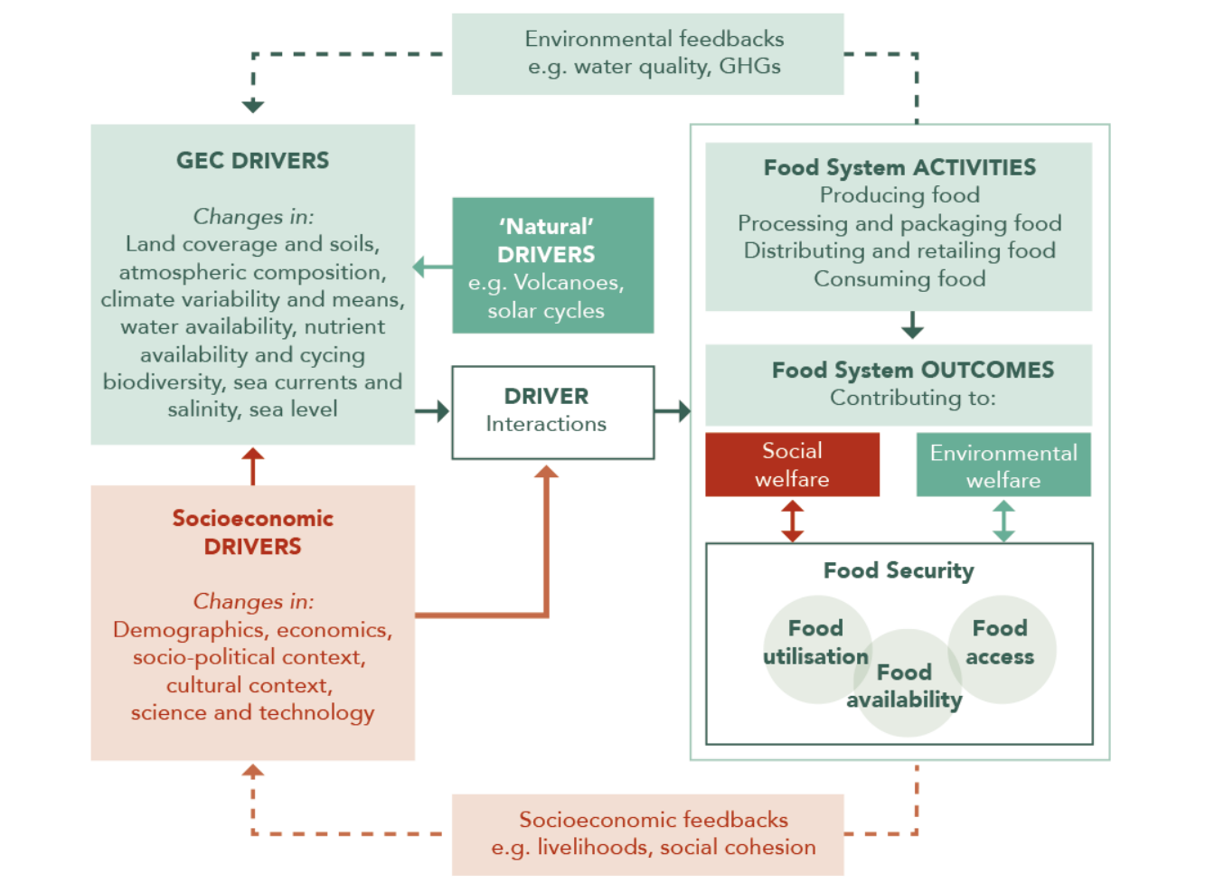 Figure 3: A food system diagram showing drivers of change and relationship with food system outcomes.