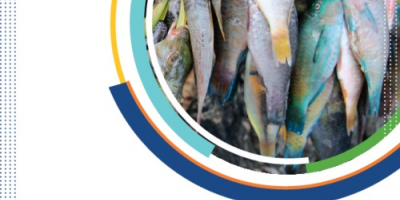 WorldFish research and innovation strategy for aquatic foods - report cover