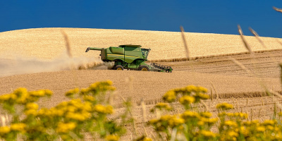 Image: Charles Knowles, Eastern Washington wheat harvest, Wikimedia Commons, Creative Commons Attribution 2.0 Generic