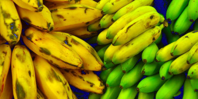 Image: Ian Ransley, Plantains, bananas, Flickr, Creative Commons Attribution 2.0 Generic