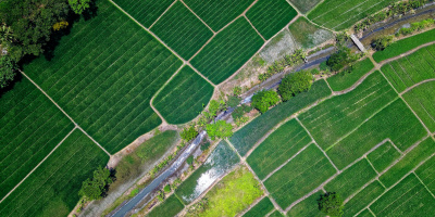 Image: Tom Fisk, Bird's Eye View of River in Middle of Green Fields, Pexels, Pexels Licence
