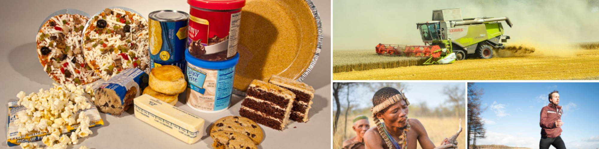Images, clockwise from left: US FDA, Avoiding trans fat, Flickr, US government work free of copyright restrictions – Anemone123, Combine harvester agriculture, Pixabay, CC0 Creative Commons – StockSnap, People man exercise, Pixabay, CC0 Creative Commons – Andy Maano, Lifestyle of the Bushmen (gathering food), Wikimedia Commons, Creative Commons Attribution-Share Alike 4.0 International