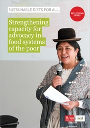 IIED report cover