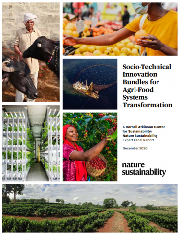 Socio-technical innovation bundles for food transformation report cover