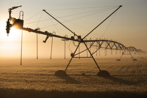 Photo: Chris Happel, irrigation at dawn, Flickr, Creative Commons License 2.0 generic.