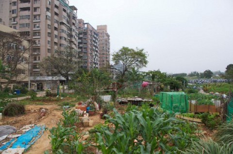 Photo: Shou-Hui Wang, The farm inside the city, Flickr, Creative Commons licence 2.0