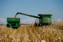 Image: United Soybean Board, Corn Harvest, Flickr, Creative Commons Attribution 2.0 Generic