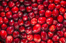 Image: liz west, cranberries, Flickr, Creative Commons Attribution 2.0 Generic