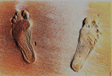 Photo: Pejman Parvandi, Footprint, Flickr, Creative Commons License 2.0